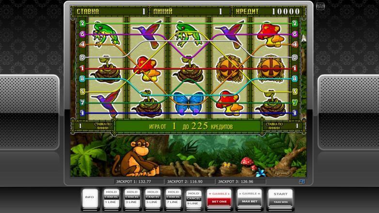 Изображение игрового автомата Crazy Monkey 2 1